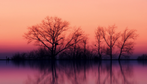 鄱阳湖-鄱阳湖旅游景区